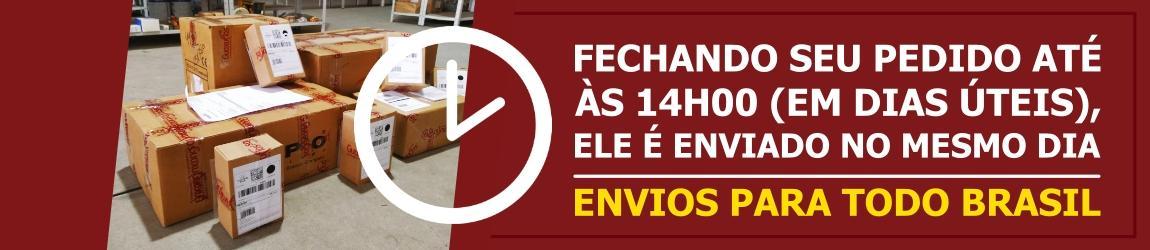 Layout_Envio Brasil